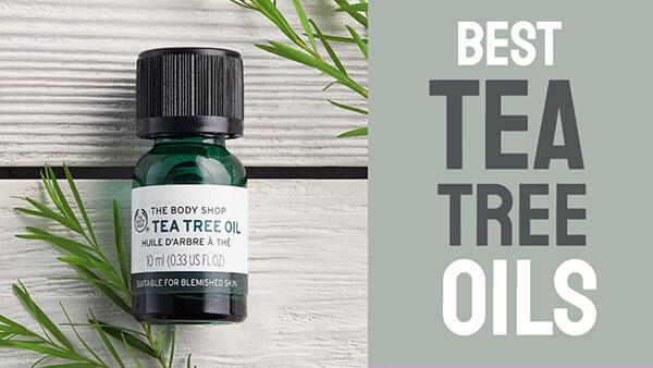 Nên mua sản phẩm Tea Tree Oil ở đâu uy tín - chính hãng - chất lượng?