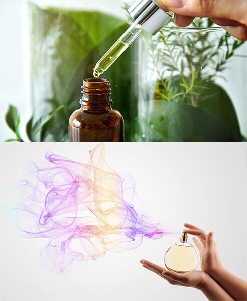 Fragrance Mist là gì?